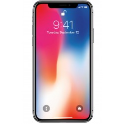 iPhone X 256Gb Spacegrau...